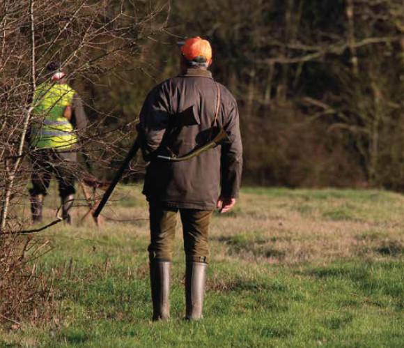 Gibier d'automne : l'Ecosse, paradis  des chasseurs