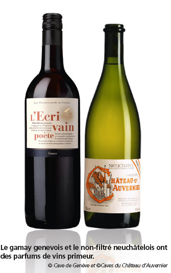 Beaujolais Nouveau  et autres vins «primeurs»