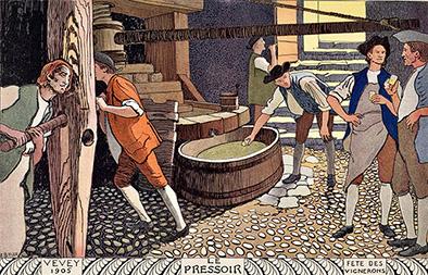 Ambassadeur des vins  Vaudois et Romands