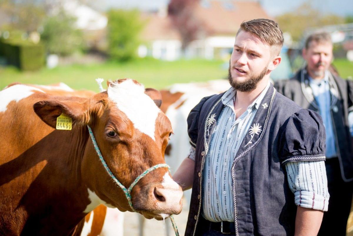La Fête a ses 40 vaches